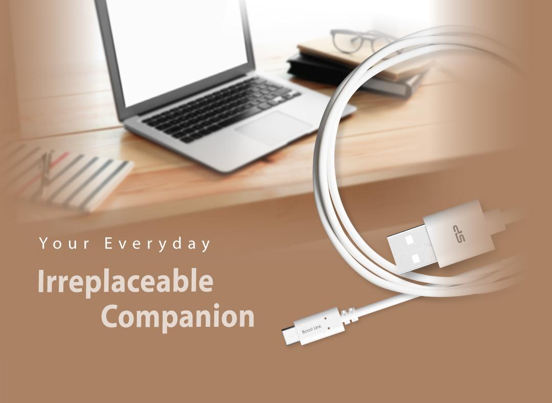 Boost Link PVC LK10AC<br><font color='#888888' size='2%'>(Type-C / Type-A)</font>